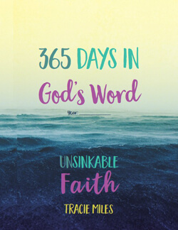 365 Days in God's Word